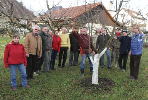 Arboriculteurs Taille hiver